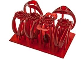Red prototypes